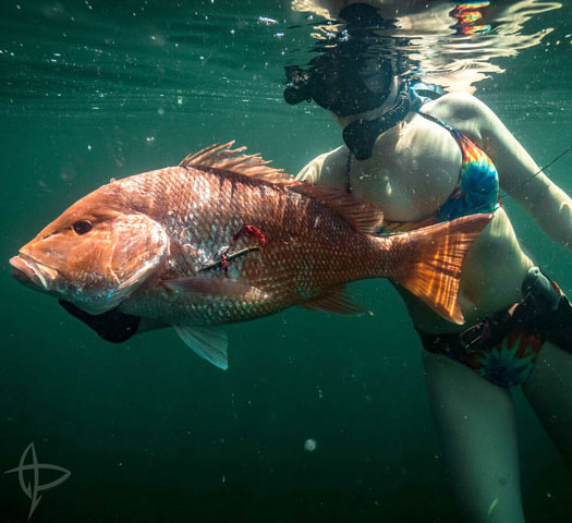 Spearfishing World Record Holder